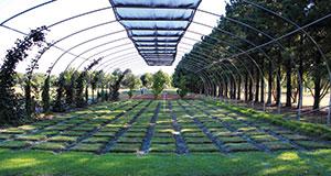 Oklahoma State University Turfgrass Research Center