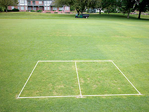 Figure 1: When Velocity is applied frequently, selective control is achieved, but creeping bentgrass can be severely injured and significant voids can occur as the Poa annua dies.