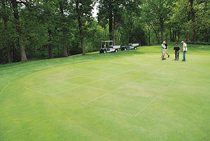 The research site on the Ackerman Hills Golf Course at Purdue University. Photo by Aaron Patton