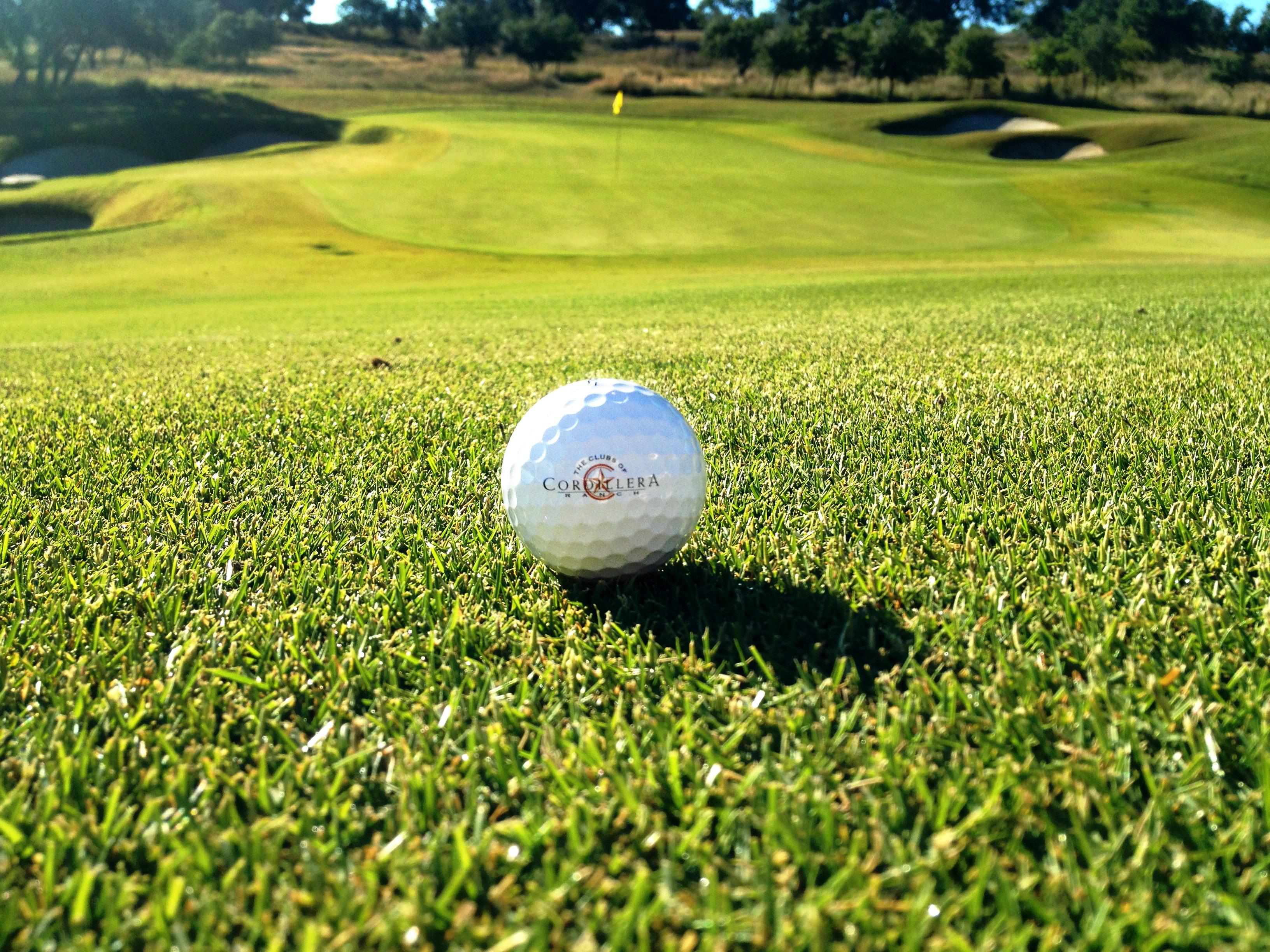 charming golf course grass Part - 5: charming golf course grass images