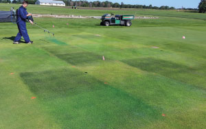 Plant colorants are applied to a creeping bentgrass fairway plot in Mead, Neb. The plot is then covered with shade cloth to reduce sunlight intensity by 70 percent.