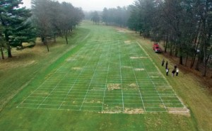 Overhead view of the 119 treatments at the snow mold research trial at Wausau Country Club in Schofield, Wis., during the spring of 2015. (Click on the image to enlarge it.)