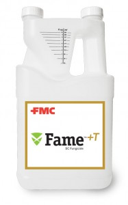 Fame+T_One_Gallon_a-500