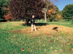 Carl investigates a potential ABW overwintering site at Sinking Valley Country Club in Altoona, Penn. Using canines to identify ABW overwintering sites may lead to greater precision management in spring.