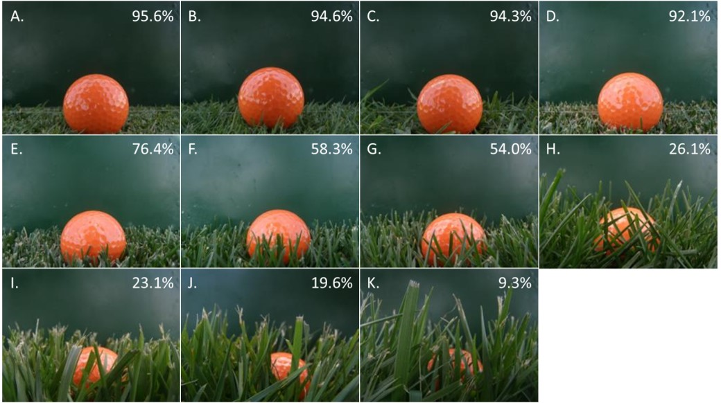 Images collected prior to golf shot execution to analyze for ball lie (percent of ball exposed) showing (A) creeping bentgrass at 0.5 inch, (B) creeping bentgrass not mowed for two days, (C) creeping bentgrass not mowed for five days, (D) Kentucky bluegrass at 1.0 inch, (E) Kentucky bluegrass at 1.5 inches, (F) Kentucky bluegrass at 2.0 inches, (G) Kentucky bluegrass at 2.5 inches, (H) Kentucky bluegrass at 3.0 inches, (I) tall fescue at 3.0 inches, (J) tall fescue at 3.5 inches, and (K) tall fescue at 4.0 inches. Golf ball lie determined by digital image analysis is listed with each sub-image.