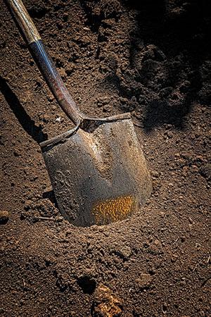 Photo: iStock.com/JonGorr