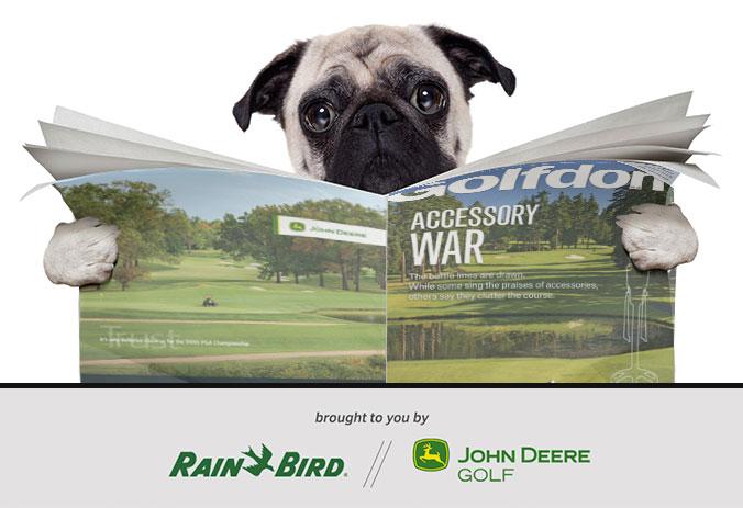Image: iStock.com/damedeeso