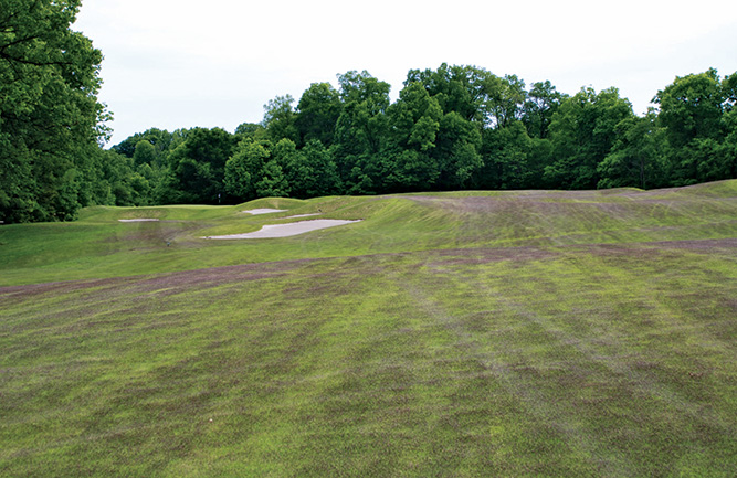 Dark purple fairway due to Meyer zoysiagrass seedhead production (Photo: Aaron Patton)
