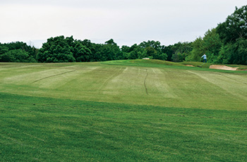 Fairway with poor mowing quality and whitish color (Photo: Zac Reicher)