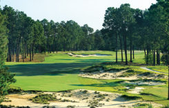 Pinehurst No. 4, Hole No. 5 (Photo: Pinehurst Resort)