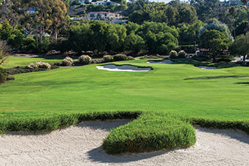 Kikuyu grass surrounding bunker (Photo: Palos Verdes CC)