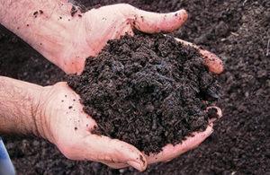Compost (Photo: Pete Landschoot)