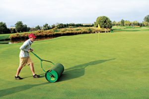Young laborer rolling greens (Photo: Seth Jones)