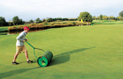 A young laborer rolling greens (Photo: Seth Jones)