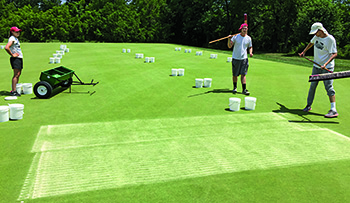 Application of sand topdressing treatments. (Photo: Hui Chen)