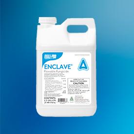 Enclave (Photo: Quali-Pro)
