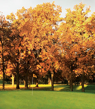 Yellow trees in autumn on golf course (Photo: Jeff VerCautren)