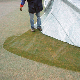 Photo: Evergreen Turf Covers