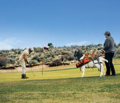 Goat on golf course (Photo: Silvies Valley Ranch/KemperLesnik)