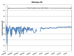 Surface temperature under the snow cover measured on the research plot in Minocqua, Wis. Deep snow cover provided optimal conditions for snow mold from November through April.