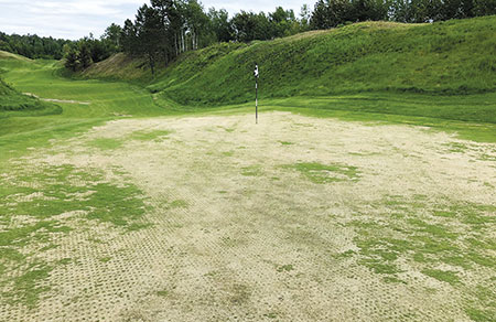 Annual bluegrass winter kill in a putting green with green patches of creeping bentgrass that survived. (Photo: Sam Bauer)