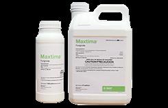 BASF Maxima fungicide (Photo: BASF)