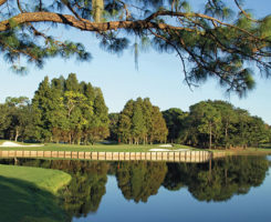 (Photo courtesy of Innisbrook Resort)