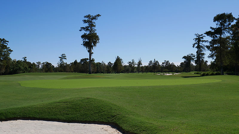 A look at the greens of the 13th hole at TPC Louisiana. (Photo: TPC Louisiana)