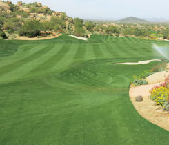 Overseeded golf course (Photo: Brian Whitlark, USGA)