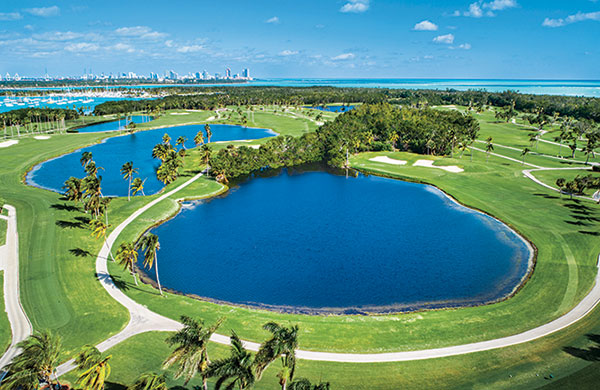 for turf removal. (photo previous page courtesy of Crandon Golf at Key Biscayne)
