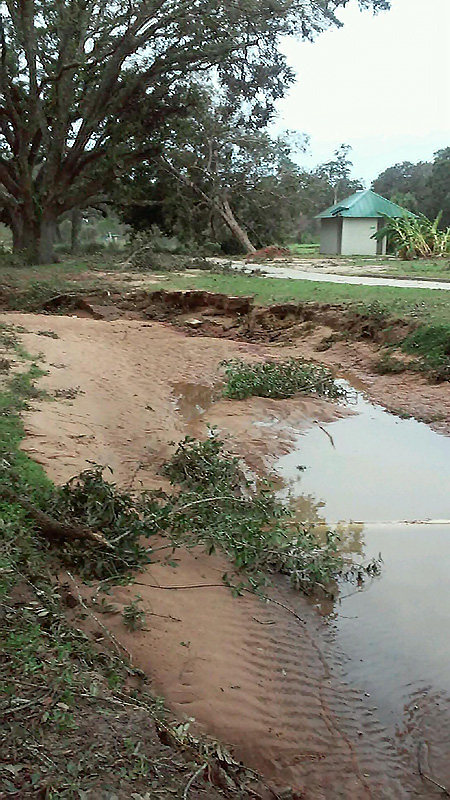 Hurricane Sally hit Pensacola, Fla., exactly 16 years to the date after Hurricane Ivan. Eddie Daigle, superintendent of Osceola Municipal Golf Course in Pensacola, Fla., says this time around, the golf course did not suffer as much damage. (Photo: Edward Daigle)