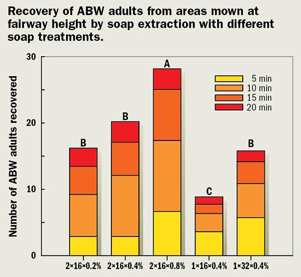 Recovery of ABW adults (Photo: Albrecht Koppenhofer)
