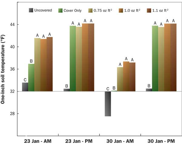 Effect of protective covers and various weights of batting fabric on the morning and afternoon soil temperature of an ultradwarf bermudagrass green on two dates in 2019. Different letters within each bar grouping indicate a significant difference.