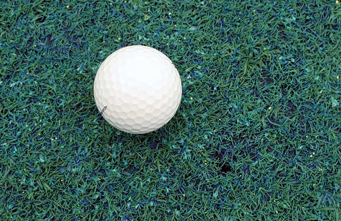 Golf ball on green with Poa annua seedheads (Photo courtesy of Elliot Dowling)
