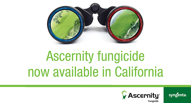 Ascernity Fungicide has been registered in California for use on golf courses to help superintendents to control key turf diseases. (Photo courtesy of Syngenta)