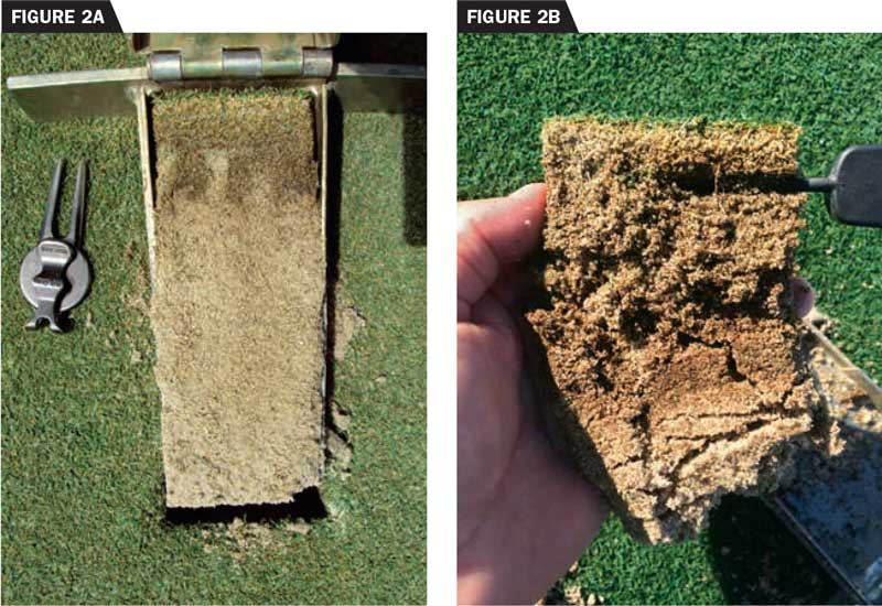 On the left, these creeping bentgrass greens were core aerated twice annually but received relatively infrequent topdressing. Organic matter accumulation caused soft conditions and localized dry spot. On the right, two growing seasons after initiating a topdressing program that applied no less than 30 cubic feet of sand per 1,000 square foot annually, organic matter has decreased by 30 percent, and surface performance has improved significantly. (photos by: Brian Whitlark, USGA Green Section)
