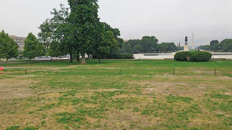 A before shot of the main lawn of Capitol Hill. (Photo: USGA)