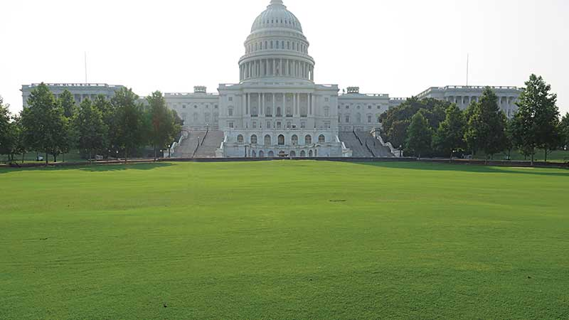 Eventually, the main lawn of Capitol Hill will include a mix of bluegrass and bermudagrass. (Photo: USGA)